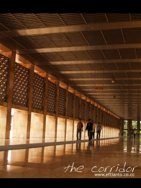 the-corridor.jpg